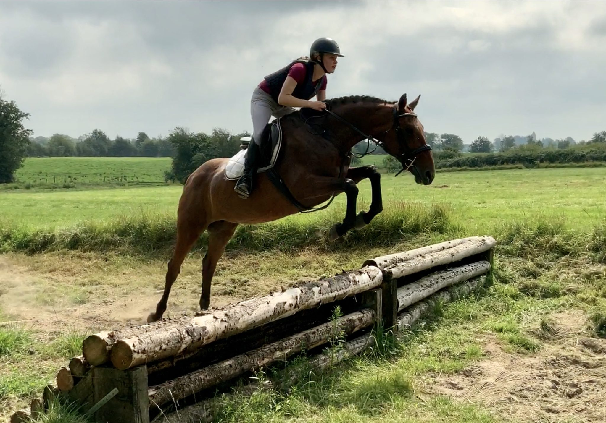 Jilly - quality Allrounder!